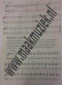 De-Professionele-Solopianist-(Boek)
